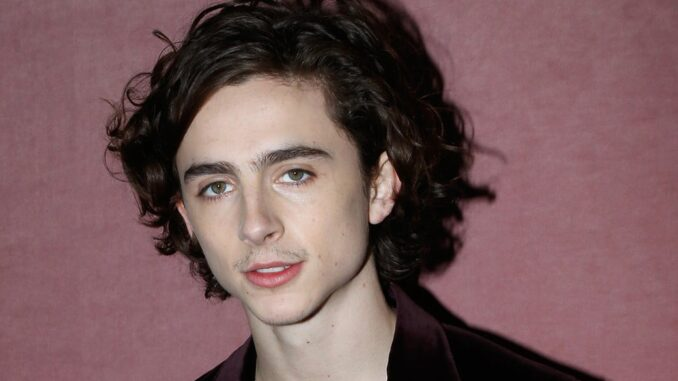 Who has Timothée Chalamet dated? Girlfriends, Dating History