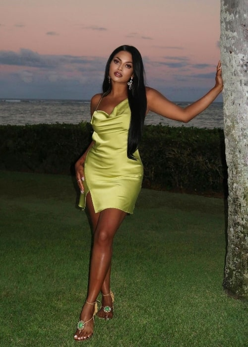 Chandrika Ravi as seen while posing in a stunning dress in Hawaii in 2021
